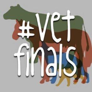 vetfinals